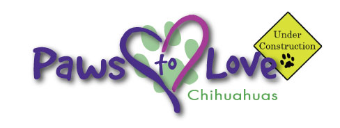 Paws to Love Chihuahuas - Specializing in AKC Longhair Chihuahuas